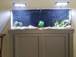 r j enterprises fusion 50 gallon aquarium tank and cabinet 50 gallon saltwater aquarium 1000 aquarium ideas