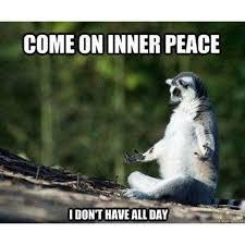 Peace Memes - 20 yoga memes that are honestly funny sayingimages com