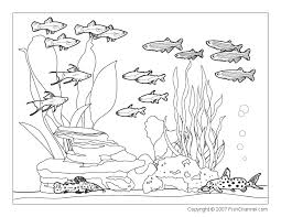 fish coloring pages print classy design freshwater fish coloring pages freshwater fish