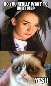 Grumpy Cat Yes Meme - boy george grumpy cat do you really want to hurt me yes