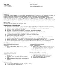 Cook Resume Sample Pdf by Simple Grill Cook Resume Template