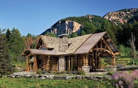 log home design home interior