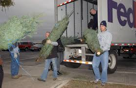 trees for troops a hit with spouses u003e joint base san antonio u003e news