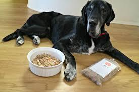 the farmer u0027s dog review thatmutt com a dog blog