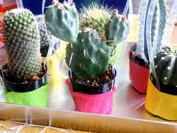 how to make mini cactus party favors how tos diy