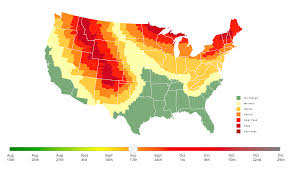 Colorado Fall Colors Map by This Interactive Fall Foliage Prediction Map Helps Photographers