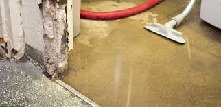 basement waterproofing and foundation repair specialists