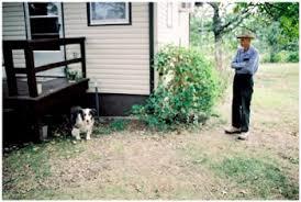 Dog Burial Backyard Scott Hallford
