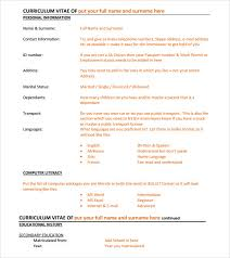 Resume Examples Format by Executive Resume U2013 8 Free Samples Examples U0026 Format