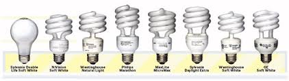 what are the best light bulbs the best compact fluorescent light bulbs pm lab test realneo for all