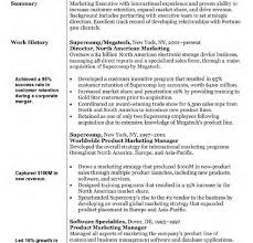 marketing resume sle sales marketing resume sle page template vice president