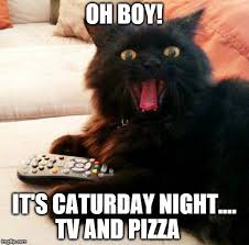 Caturday Meme - oh boy cat caturday night imgflip