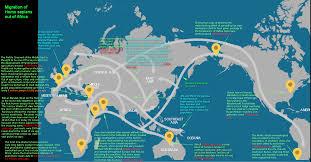 Dove Migration Map John Leavitt Welcome To Milton Gardens