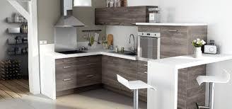 changer facade cuisine ikea faktum avec the 25 best grey ikea