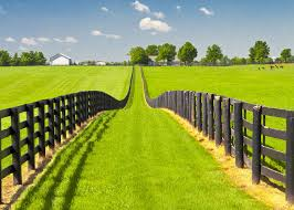 3 Bedroom Homes For Rent In Ocala Fl Real Estate In Ocala U0026 The Villages Roberts Real Estate