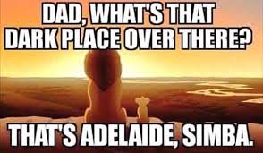 Lion King Cell Phone Meme - south australians describe the worst storm in 50 years with memes