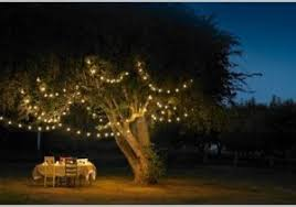 Outdoor Hanging Lights For Trees Outdoor Lights For Trees Best Of Hanging Lights