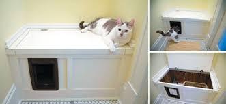 pet friendly house plans homey inspiration 8 pet friendly house plans friendly house plans