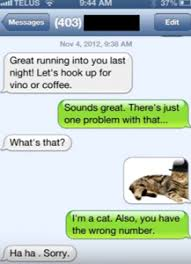 Phone Text Meme 28 Images - 28 funniest replies to wrong number texts that are crazy text