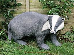 badger size stunning home garden ornament ultra