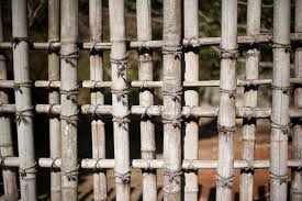 bamboo trellis free backgrounds and textures cr103 com