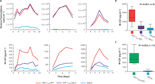 how to fold an envelope apoptotic killing of hiv 1 u2013infected macrophages is subverted by