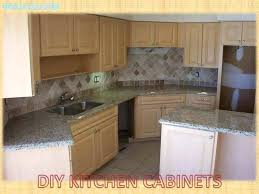 Replacement Cabinets Doors Kitchen Cabinet Fronts Home Depot Size Of Kitchen Kitchen