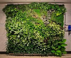 Wall Garden Ideas by Vertical Wall Garden 6c8o0 Acadrp Org Garden Ideas