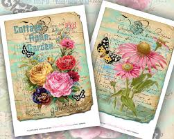 vintage book plate art shabby chic roses background wallpaper