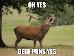 Oh Deer Meme - oh yes deer puns yes misc quickmeme deerses pinterest deer