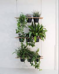 best 25 indoor window boxes ideas on pinterest indoor window