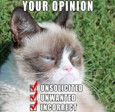 New Grumpy Cat Meme - 300 best grumpy cat images on pinterest funny animals funny