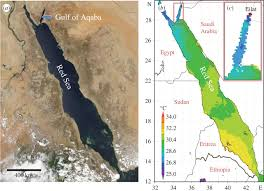 The Red Sea Map Temperature Resistance Of S Pistillata Open Science