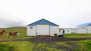 bbc travel the icelandic model who shears sheep