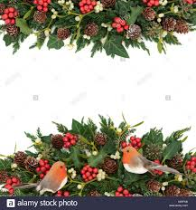 winter background border with robin decorations holly ivy stock