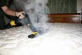 Steamer For Sofa Bed Bug Steamer Bed Bug Treatment Site
