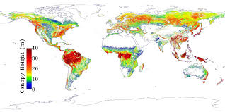 earth map nasa nasa map sees earth s trees in a new light