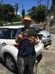 greetings from okinawa japan san diego fishing forums