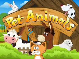 pet animals android apps on google play