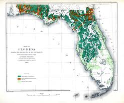 Flordia Map Map Of Florida Showing The Distribution Of The Pine Forests 1881 Ad