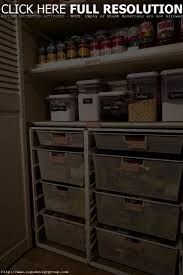 pantry cabinet organization ideas cabinet ideas to build