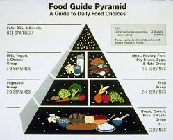 food plate icon improvement of pyramid sfgate
