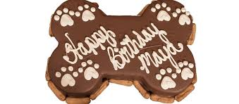gourmet birthday cakes the barkery gourmet dog bakery dog treats grooming more