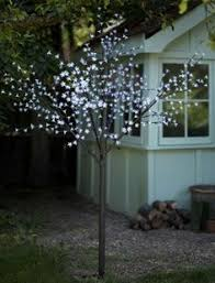 Solar Powered Tree Lights - cool café lights are solar powered no electricity plugs or