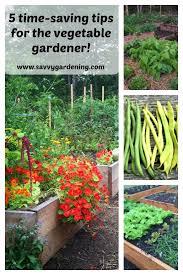 5 time saving gardening tips for the vegetable gardener