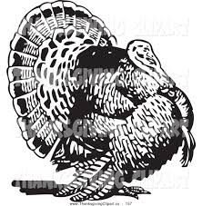 black and white thanksgiving clipart free old fashioned thanksgiving clipart 68
