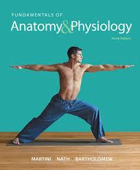 College Anatomy And Physiology Notes Martini Nath U0026 Bartholomew Fundamentals Of Anatomy U0026 Physiology