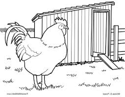forest wildlife art ren coloring page rooster 492617 coloring