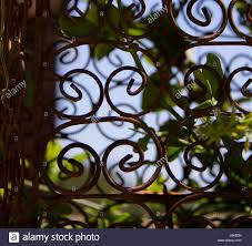 iron trellis stock photos u0026 iron trellis stock images alamy