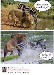 Africa Meme - all hilarious memes from the twitter trend you are welcome to